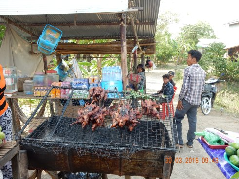 cambodia-battambang-rat