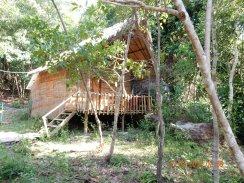 cambodia-kohrong-monkeyisland-1