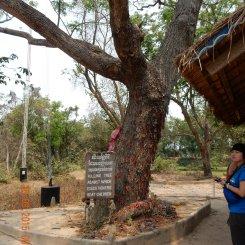 cambodia-phnompenh-killingfields-3