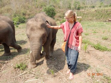 chiangmai-rantongelephantcentre-1