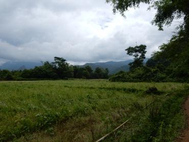 laos-mythoughtson-nature-1