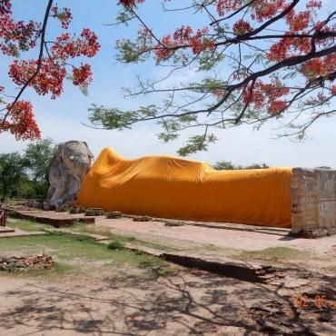travel-guide-ayutthaya-thailand-wat-lokayasutharam-2