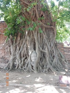 travel-guide-ayutthaya-thailand-wat-maha-that-6