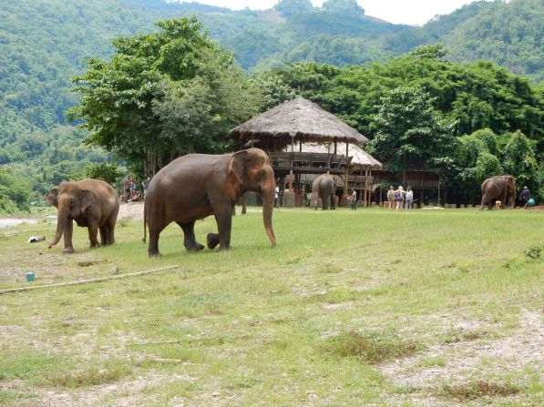 chiangmai-elephantnaturepark-4