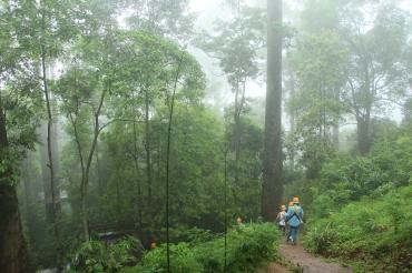 ziplining-jungleflight-chiangmai-thailand-4