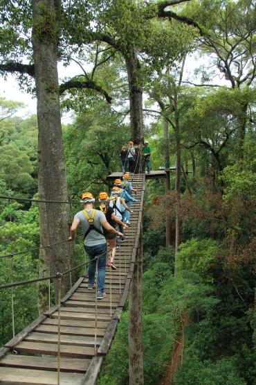 ziplining-jungleflight-chiangmai-thailand-7