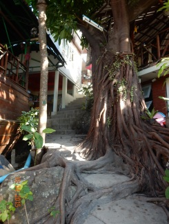 kohphiphi-therockbackpackerhostel (2)
