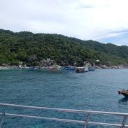 kohtao-snorkeling (3)