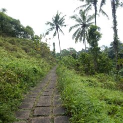 ubud-bali-campuhan ridge walk 04 (2)