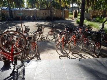 Bicycles at Gili Klapa Hostel