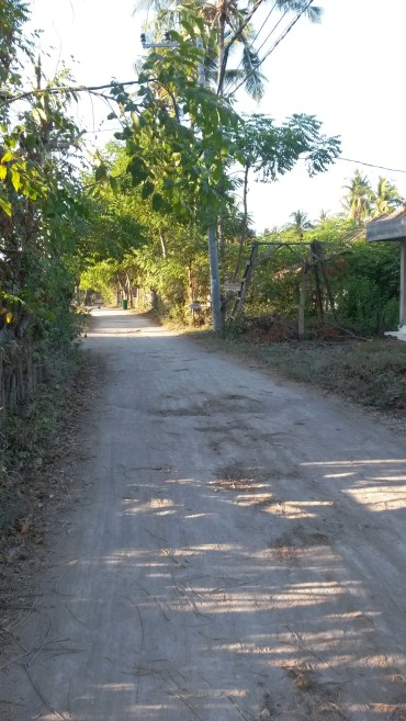 Road on Gili T