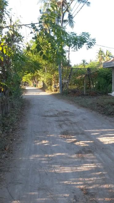 Road on Gili T