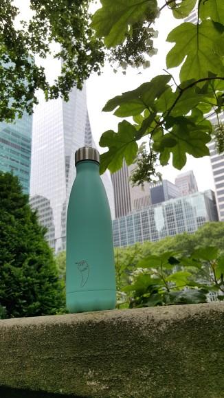 tips-newyorkonabudget (1)