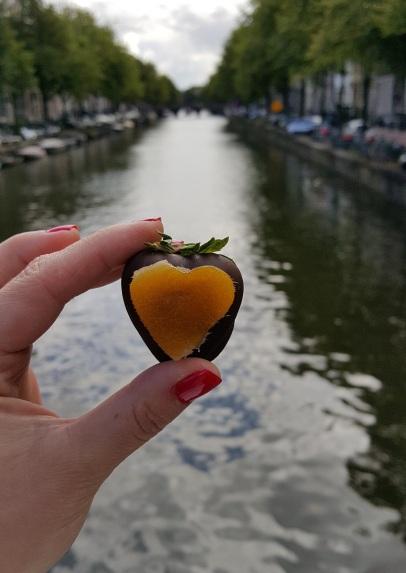 travelguide-aquicktriptoamsterdam (12)