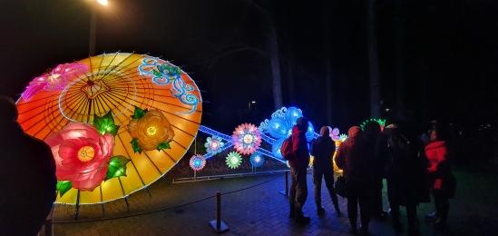 daytrip-chinalightfestival2020 (4)