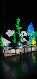daytrip-chinalightfestival2020 (6)