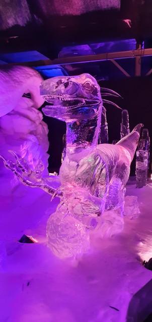 ijsbeeldenfestival2020 (1)