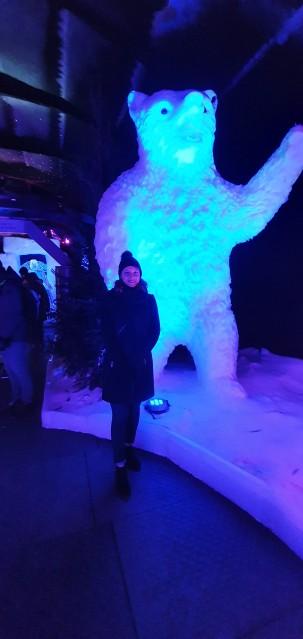 ijsbeeldenfestival2020 (7)